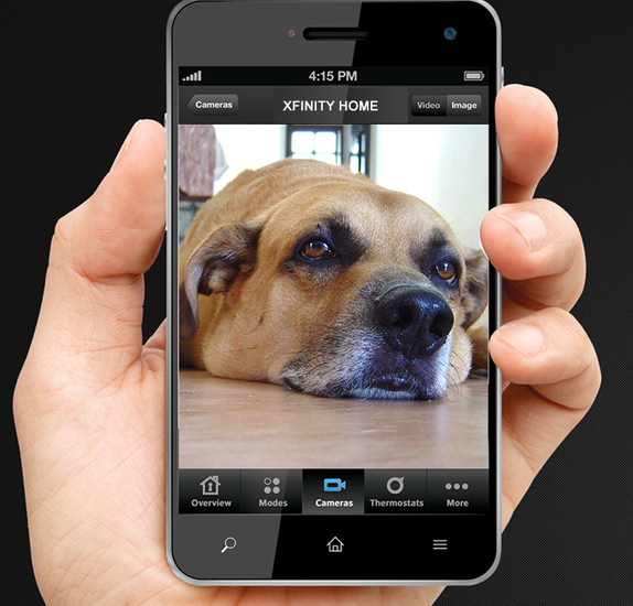 Uncover Your Pet S Secret Life With Xfinity Home