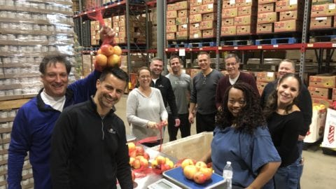 Senior leadership team sorting apples at the food bank